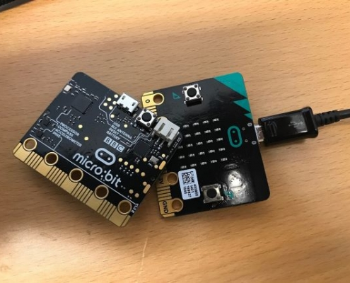 A micro:bit, which looks like a black card with lots of gold buttons and labels.